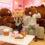 [KOREA] Line Friends Store & Cafe Biggest Store at Garosugil Seoul